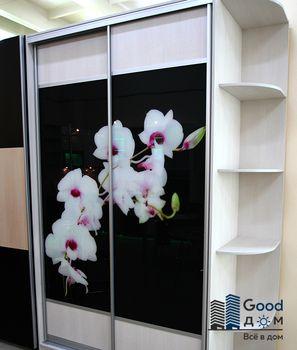 Цветы фотопечать на шкаф