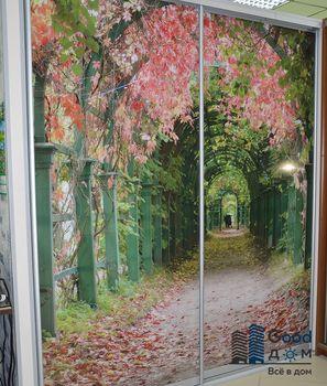 Шкаф-купе с рисунком природы